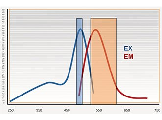 Variable bandwidth monochromators optimize fluorophore detection