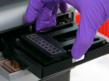 Micro-volume DNA quantitation with Take3 plate and Epoch