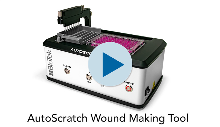 AutoScratch Wound Making Tool for Wound Healing and Cell Migration Assays